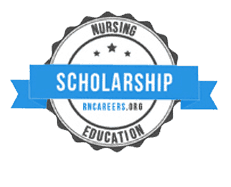 Psychiatric Nurse Practitioner Salary Programs Rn Careers