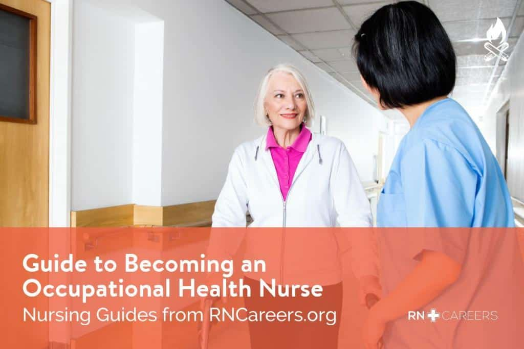 Guide to Occupational Health Nursing